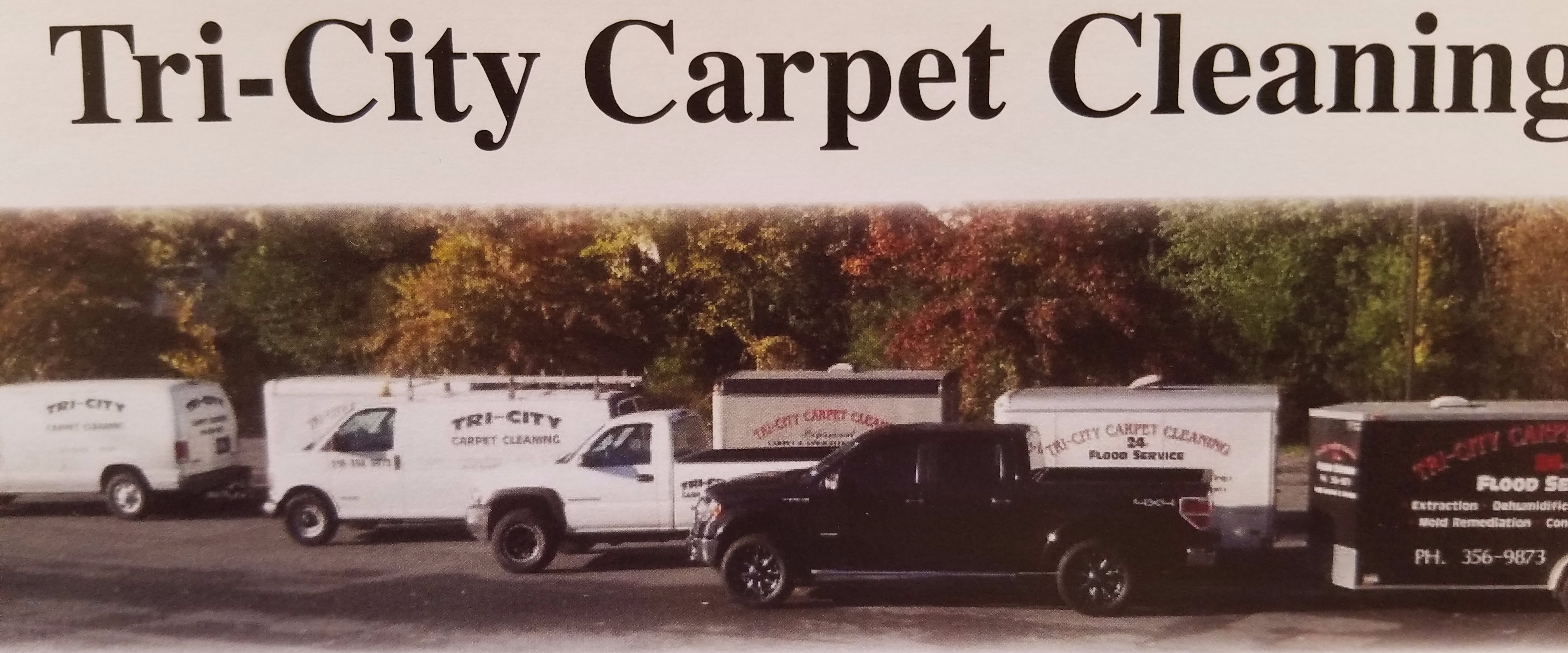 carpet cleaning tri cities carpet review. Black Bedroom Furniture Sets. Home Design Ideas